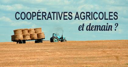 Coopératives agricoles : quel chemin de réussite pour demain ? H3O - Management de Transition