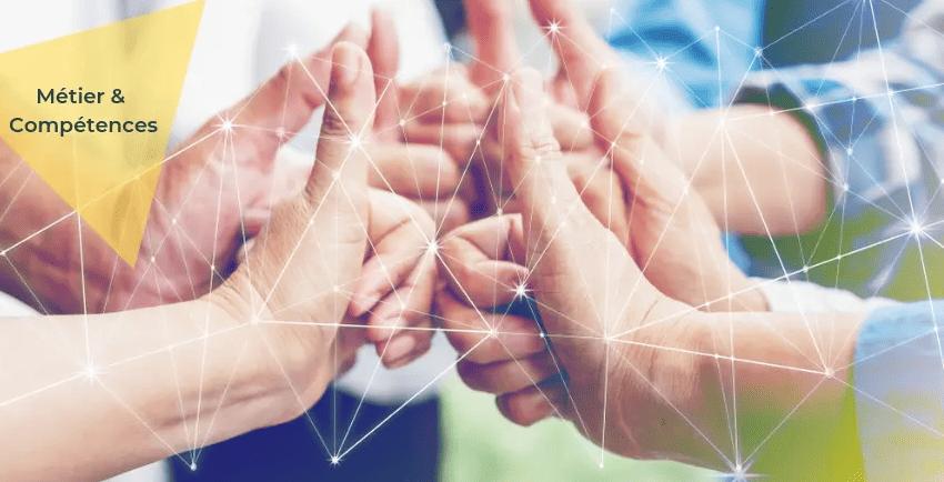 Approche systémique et transformation : manager de transition #2
